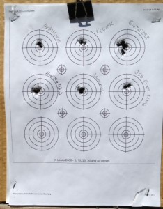 12-meters-various-pellets-sumatra-carbine