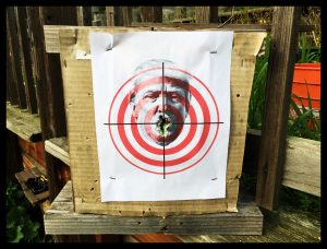Free Trump Target